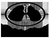 Satri House Logo